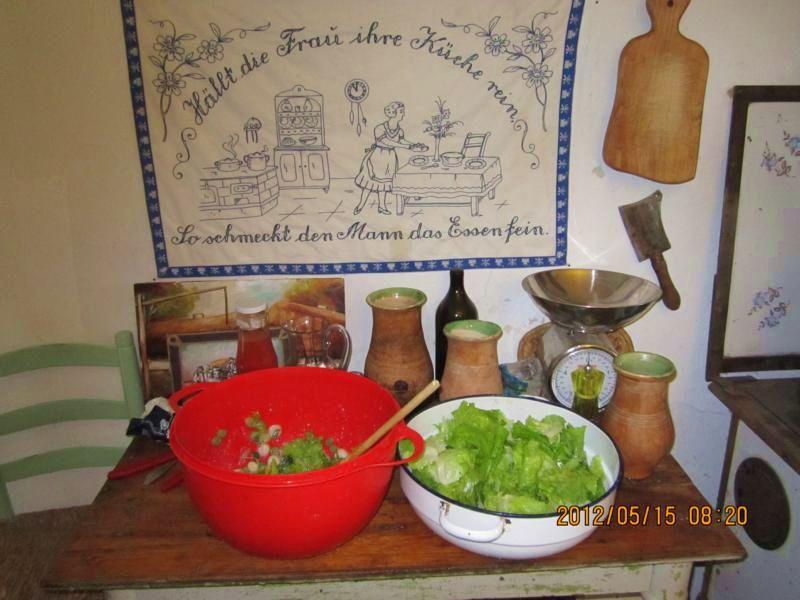salata_csendelet