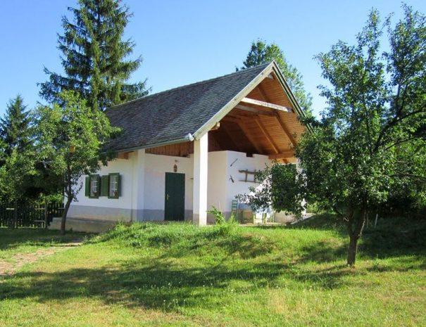 A kis ház